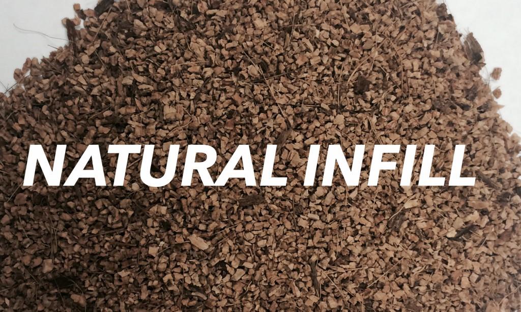 Natural Infill Header